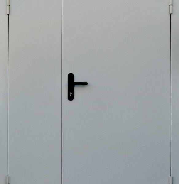 Дверь ДПМ EIS60-01 одностворчатая, стандартных размеров